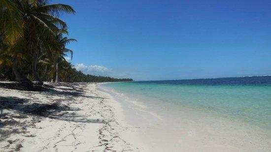 Natura Park Beach - EcoResort & Spa : PLAGE DESERTE SUR LA GAUCHE DE L'HOTEL
