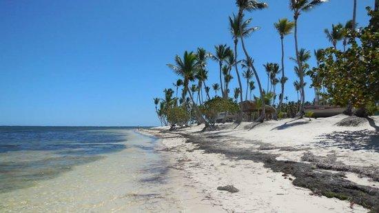 Natura Park Beach - EcoResort & Spa: PLAGE DESERTE A 5 MIN A DROITE DE L'HOTEL