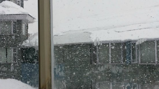 Hotel Woodstock: View of snow fall from room