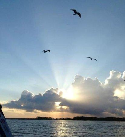 Sailing The Edge Of America - Folly Beach : Nature Smiling