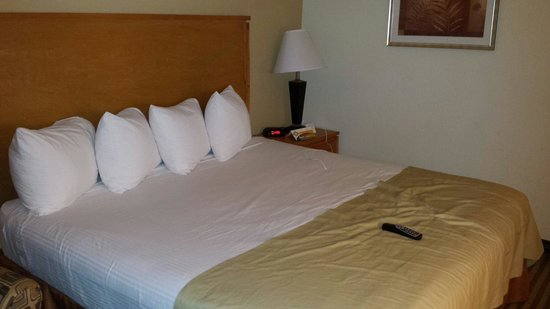 Quality Inn DFW-Airport: Room march 2014
