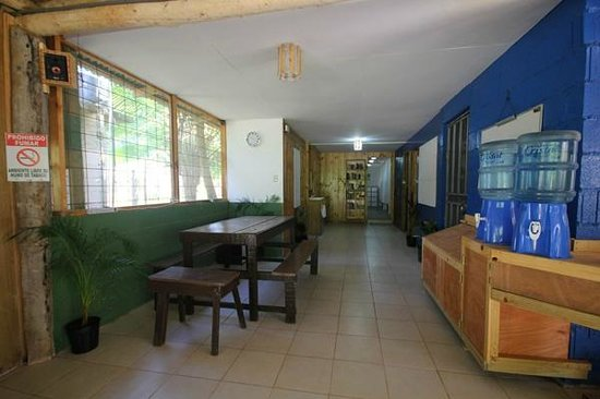 Drake Bay Backpackers : The hostel features several areas for dining and relaxing