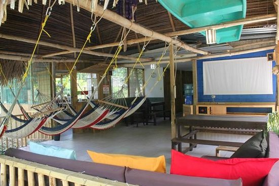 Drake Bay Backpackers : The hostel features a rancho with hammocks, sofa, cinema screen and sound system