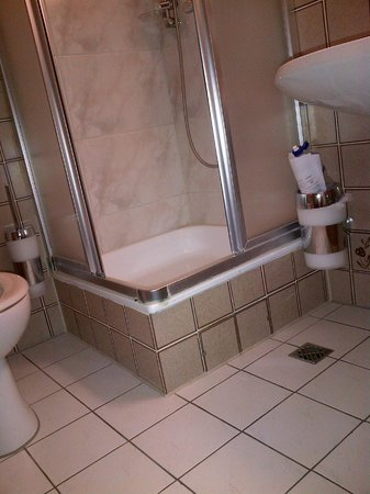 Best Western Ambassador Hotel: Tiny bathroom