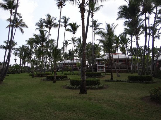 Grand Palladium Bávaro Suites Resort & Spa: Camino hacia la playa