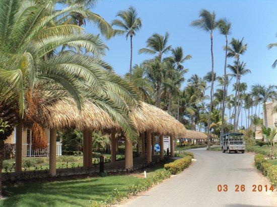 Grand Palladium Bávaro Suites Resort & Spa: Caminos que llevan a playa o lobby del hotel