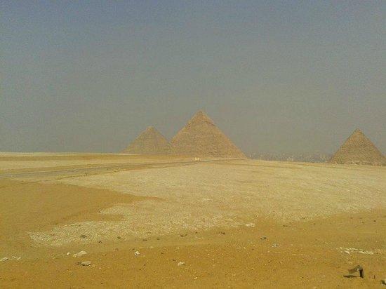 Ramasside Tours - Day Tours: pyramids