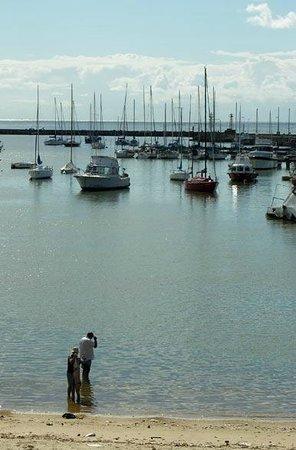 Puerto del Buceo