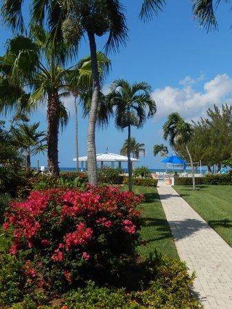 Silver Sands: The best gardens ....
