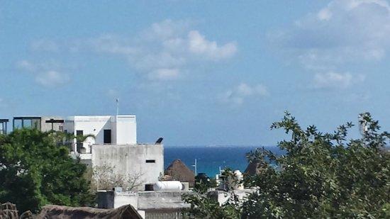 Suites Corazon: vue de toit