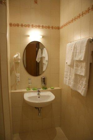 Altai Hotel: Ванная комната