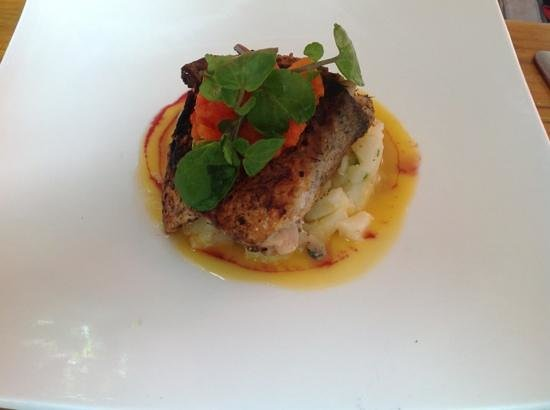Noisy Oyster: Hake, superb