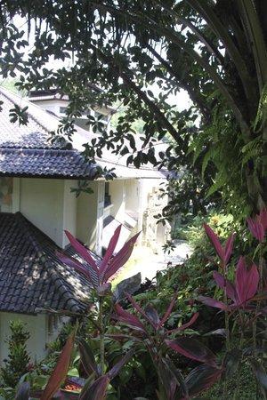 Ayung Resort Ubud: Bâtiment Sita