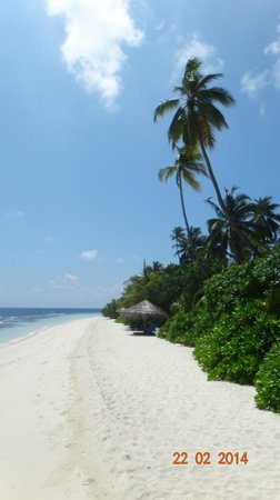 Robinson Club Maldives : narrower beach in front of the seaview bungalows at its broadest