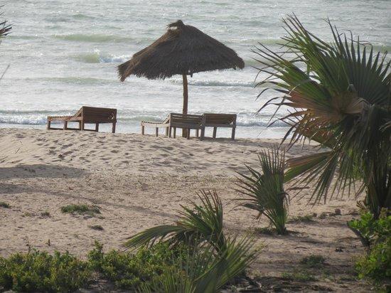 Nemasu Eco-lodge: Beach area