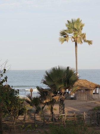 Nemasu Eco-lodge: View from the restaurant