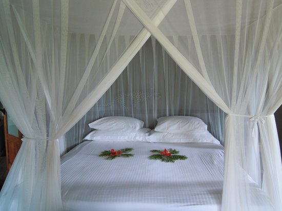 Motswari Private Game Reserve : Our lovely bed