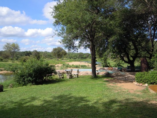 Motswari Private Game Reserve : View from the bar
