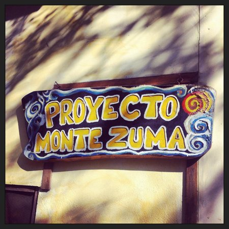 Proyecto Lodge: Proyecto Montezuma !