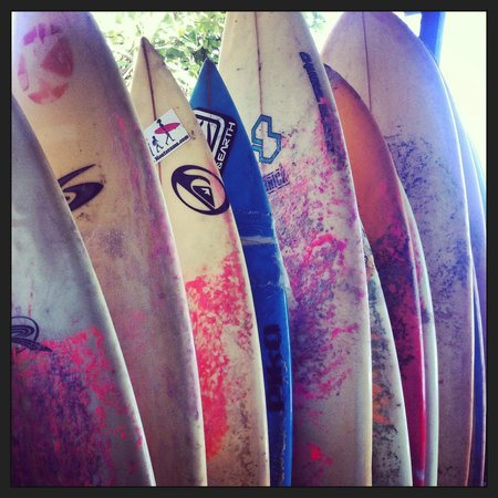 Proyecto Lodge: Surf boards
