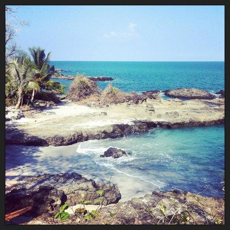 Proyecto Lodge: Ocean view
