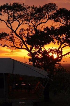 Serengeti Bushtops Camp: sunset at the serengeti