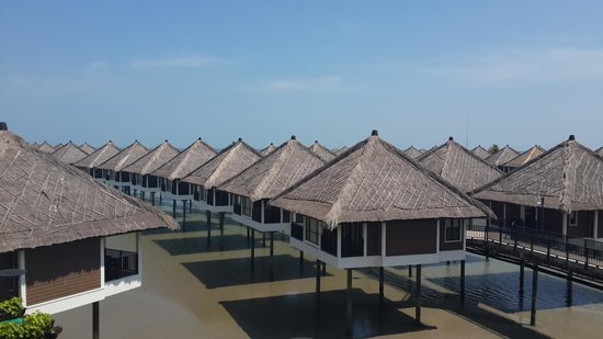 AVANI Sepang Goldcoast Resort : cute villas
