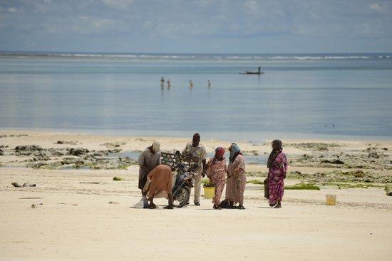 Dongwe Ocean View : Рыбаки вернулись, идет торговля, прям напротив отеля