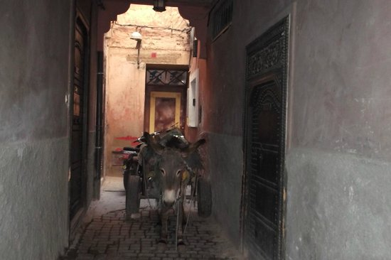 Riad Ajmal: Just outside the front door to Riad