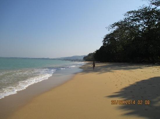 great beach at the sarojin