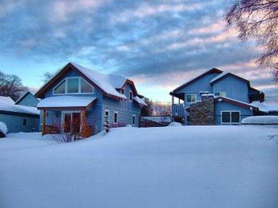 Placid Bay Inn : Backyard in winter