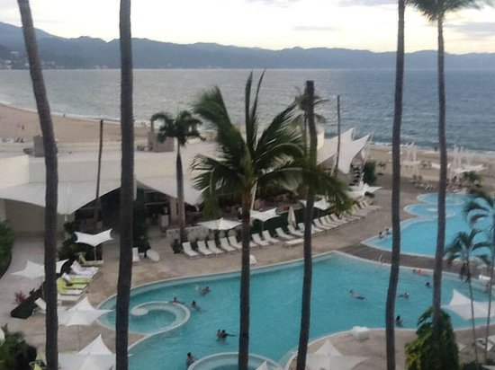 Hilton Puerto Vallarta Resort : View from our first room/balcony. What's up with the palms missing fronds?