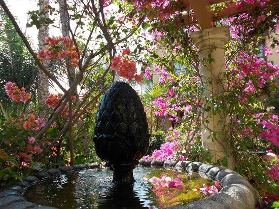 Best Western Plus Sunset Plaza Hotel: piscine