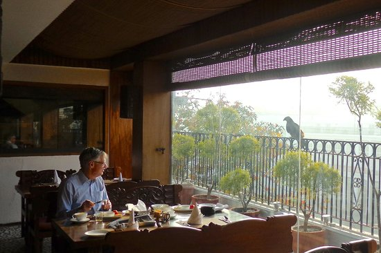 Hotel Palace Heights: Eagle watching my husband eat breakfast