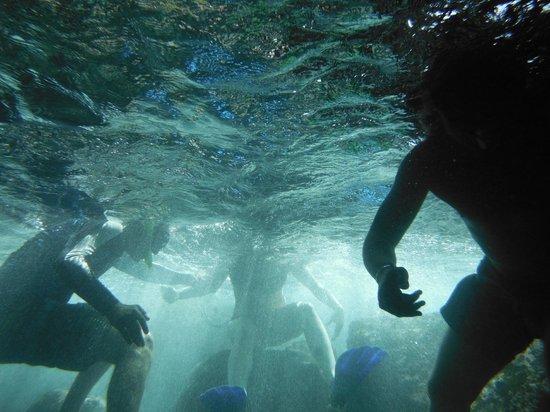 St.Thomas Scuba and Snorkel Adventures: underwater cave