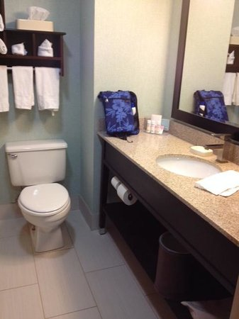 Hampton Inn Huntsville - Arsensal/South Parkway: Bathroom