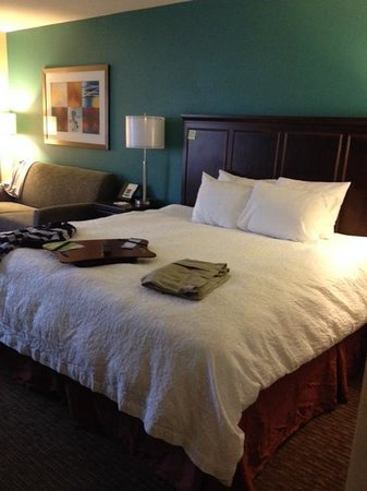 Hampton Inn Huntsville - Arsensal/South Parkway: King Bed