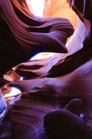 Lower Antelope Canyon : Antelope lower canyon