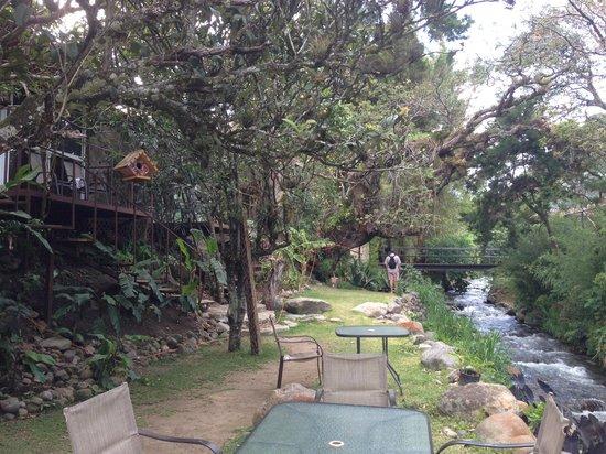 Hostal Garden by Refugio del Rio: Giardino