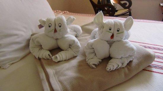 Hotel Hacienda Uxmal Plantation & Museum : Towel Art