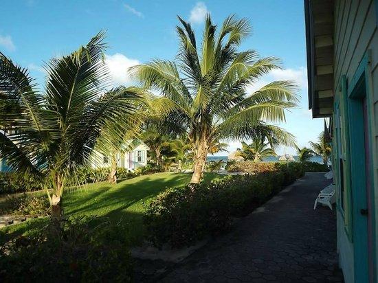 Royal Caribbean Resort: Resort