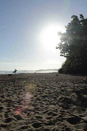 Cariblue Hotel: beach at morning