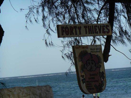 Forty Thieves Beach Bar & Bistro: Joli logo du bar à l'ombre d'un arbre