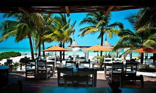 Restaurant picture of holbox hotel casa las tortugas - Holbox hotel casa las tortugas ...