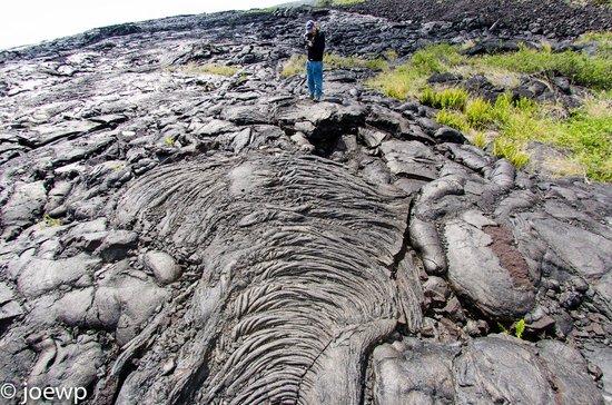 Mt. Kilauea : Lave fields