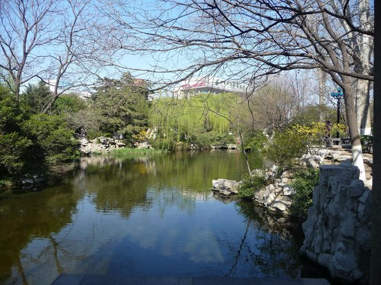 Baotu Spring Park: Reflets