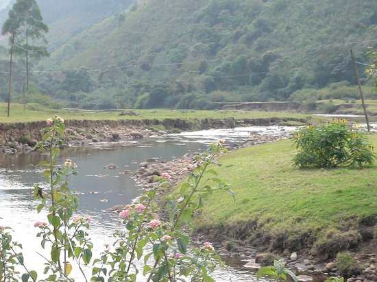 Red Sparrow Hotels and Resorts : Munnar River