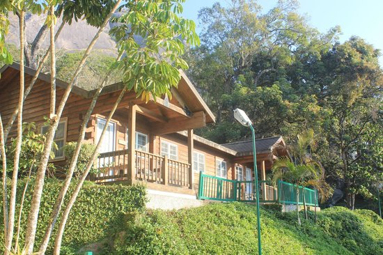 Club Mahindra Munnar: Studio log huts