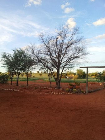 Bagatelle Kalahari Game Ranch: devant le lodge