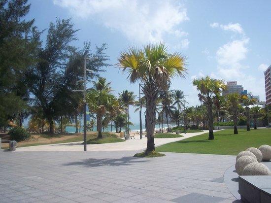 Holiday Inn Express San Juan Condado: ventana al mar